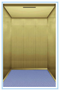Hot Sale Machine Roomless Freight Cargo Passenger Home Hospital Sightseeing Elevator pictures & photos