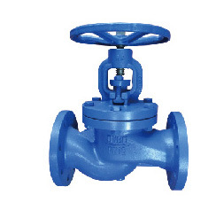 DIN Globe Valve DN65 pictures & photos
