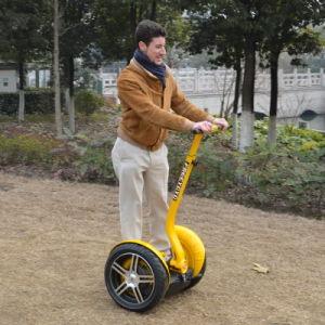 Electric Two Wheels Freeyoyo (G4 URBAN) pictures & photos