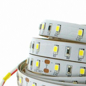 New 2835 SMD 36W LED Strip Rope Lights with CE 12/24V DC pictures & photos