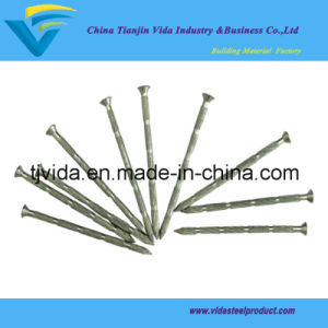 Galvanized Concrete Steel Nails Bamboo Shank pictures & photos