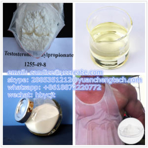 Lean Muscle Test PP Raw Steroid Powder Testosterone Phenylpropionate 1255-49-8 pictures & photos