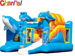 Dolphin Inflatable Bouncer Combo Kids Inflatable Air Jumper Combo (Bb016) pictures & photos