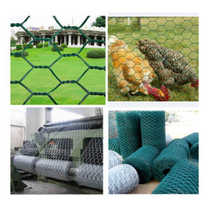 Hot Sale Hexagonal Fencing Wire Mesh with High Quality pictures & photos