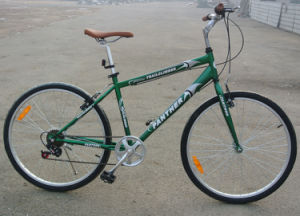 "Hot Sale Hybird Bicycle 26"" Cheap Multi-Speed City Bike (FP-CB-050) pictures & photos"