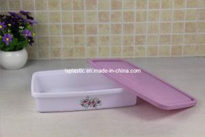 Rectangular Plastic Food Container (LS-1029)