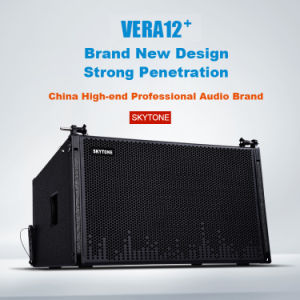 Upgraded New Grille Skytone Vera 12inch Top Plus 18inch Sub Line Array PRO Audio DJ System pictures & photos