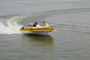 4.25m Hypalon Rib Boat (with SAIL 40HP outboards) pictures & photos