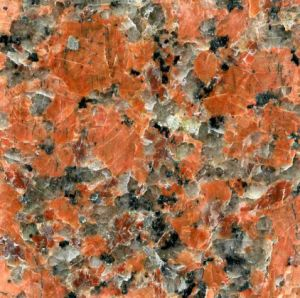 Maple Red Granite Tile for Swimming Pool Coping
