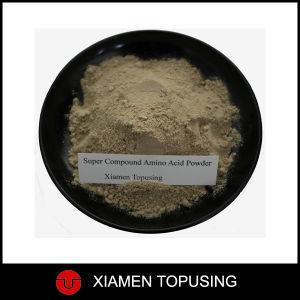 Super Compound Amino Acid Powder pictures & photos