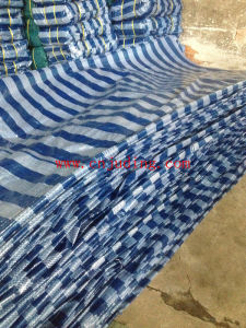 Coated Tarpaulin