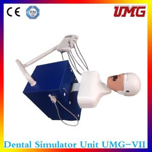 High-Quality Dental Simulation in Teaching Auxiliary Equipment pictures & photos