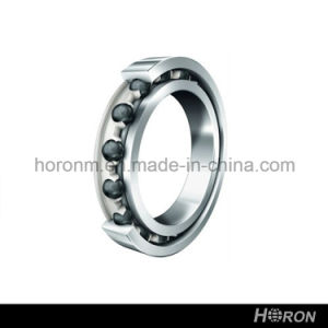 Stainless Steel Deep Groove Ball Bearing (W 61710) pictures & photos