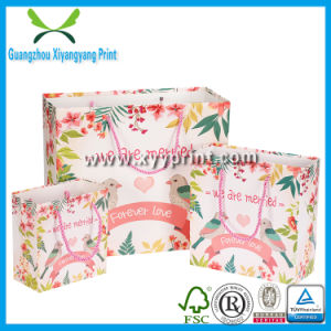 OEM Custom Printed Logo Christmas Paper Shopping Bags pictures & photos