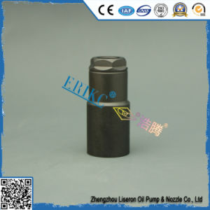 Erikc E1022003 Diesel Fuel Engine Injector Nozzle Nut pictures & photos