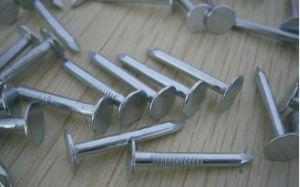 Low Price Iron Common Nail pictures & photos