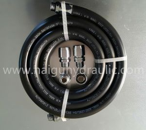 Petroleum/Diesel Dispensing/Delivery Hose for Service Station Curb Pump pictures & photos