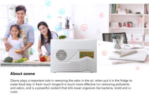 2 in 1 Ozone Air Purifier Water Zone Generator 2186 pictures & photos