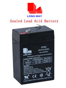 6V4ah Maintenance Free Battery Rechargeable Gel Battery pictures & photos