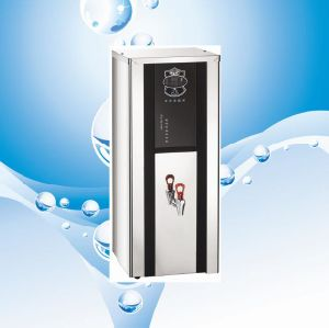 Hot Water Boiler pictures & photos