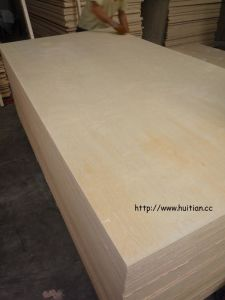 Birch Plywood pictures & photos