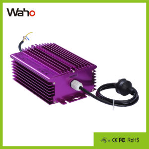 Electronic Ballast 600W 220V for Hydroponics Lighting