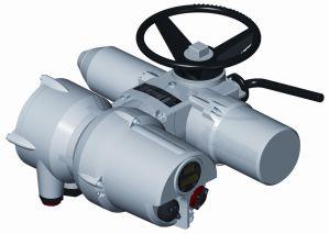 Electric Actuator (AI/MI Series)