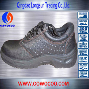 Breathable Lace-up Fashion Safety Shoes/Footwear (GWPU-1014)