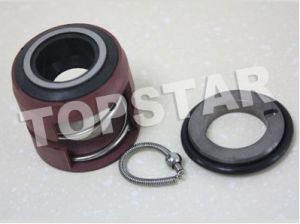 Mechanical Seals (THL-20 mm)