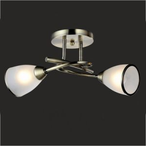 Ceiling Lights Beautiful Ceiling Lamp (GX-6056-2) pictures & photos