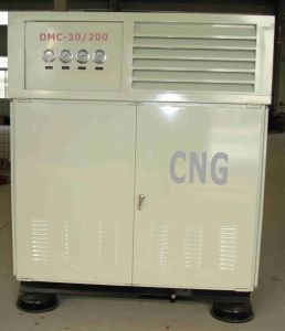 DMC-20/20 25MPa CNG Station for Commercial Fleet (DMC-30/200) pictures & photos