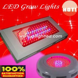 High Power 120w LED Grow Light (GL-G-120W)