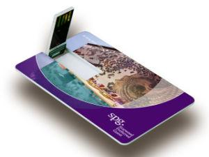 Colorful Printing Logo Credit Card USB, USB2.0