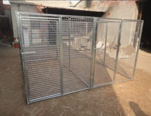Dog cages pictures & photos