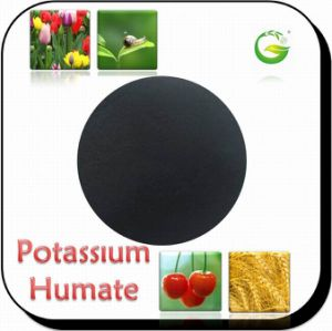 Potassium Humate 90% pictures & photos