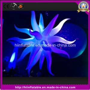 Colorful Inflatable Decor Stars for Decoration Event pictures & photos