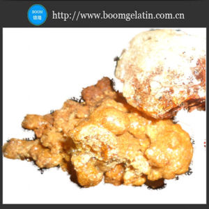 Gum Arabic Good Quality and Best Price pictures & photos
