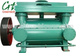 Water Ring Vacuum Pump and Compressor/ Metallurgy Vacuum Pump (2BE1) pictures & photos