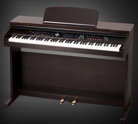 Electronic Keyboard (DP8820)