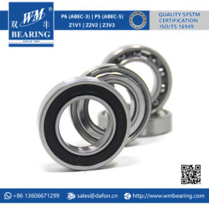 6007 2RS Low Friction Sealed Deep Groove Ball Bearing pictures & photos