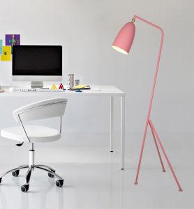 Fancy Modern Stand Floor Lamp Metal Standing Lighting for Living Room pictures & photos