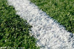 Field Grass, Wear-Resistance 20mm-50mm Artificial Grass pictures & photos