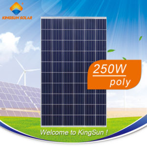 250W High Efficiency Poly Solar Module for House pictures & photos