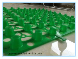 Plastic Dimple Drainage Sheet pictures & photos
