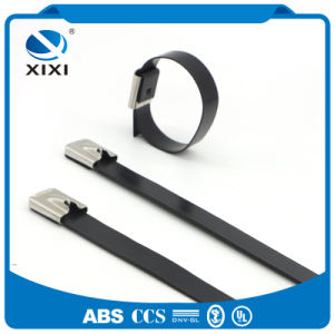 High Strength Stainless Steel Ss High Temp Metal Colored Zip Cable Ties with Metal Locking Tab pictures & photos