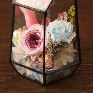 Preserved 100% Natural Rose Flower for Birthday Gift pictures & photos