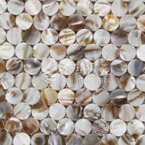 Fashion Jewelry Shell Mosaic Building Material pictures & photos
