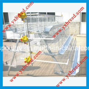 Chinese Providers Farm Machinery 4 Tiers Poultry Layer Cage pictures & photos