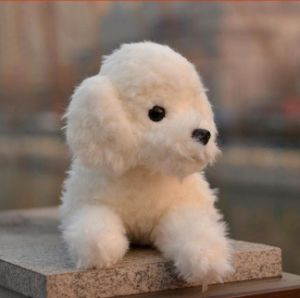 Stuffed Teddy Dog Doll pictures & photos