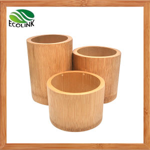 Natural Bamboo Pen Holder / Pen Container pictures & photos